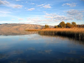 Whoop bass guide service for Clear lake ca fishing