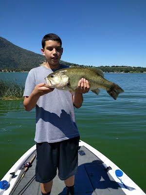 8 pound largemouth. First day bass fishing!